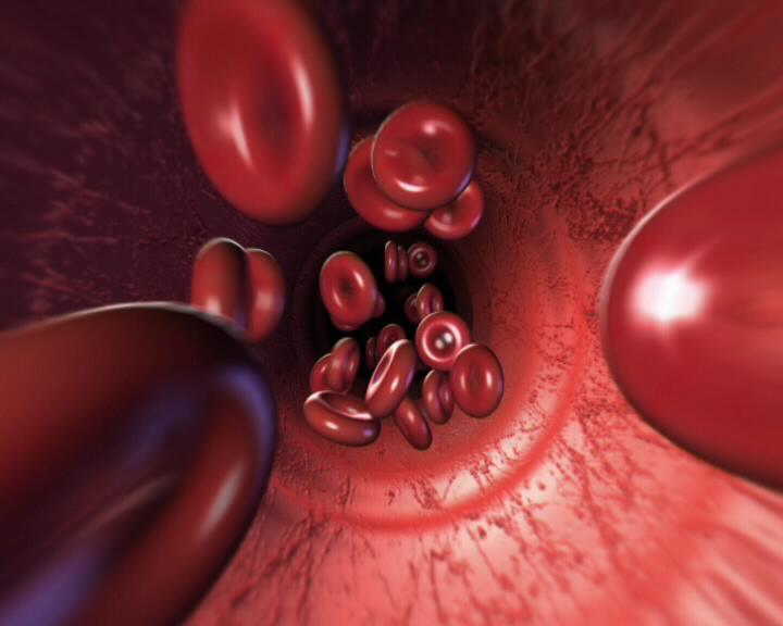 анализатор кровушка