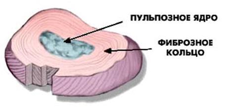 сочный диск